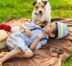 Dog-Boy-Picnic